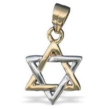 """תמונה של תליון גולדפילד """"מגן דוד"""" (זהב וכסף)"""