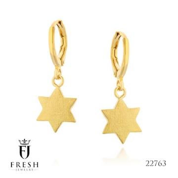 """תמונה של עגילים מגולדפילד """"מגן דוד מלא"""" - Fresh Jewelry"""