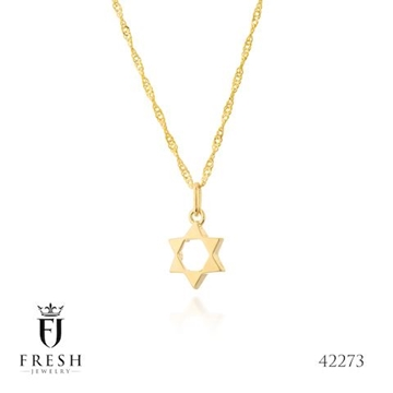 """תמונה של שרשרת מגולדפילד """"מגן דוד מלא"""" - Fresh Jewelry"""