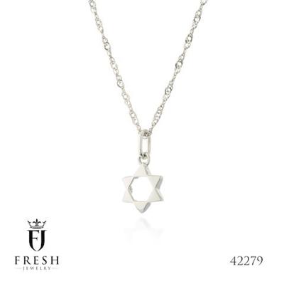 """תמונה של שרשרת מכסף """"מגן דוד מלא"""" - Fresh Jewelry"""